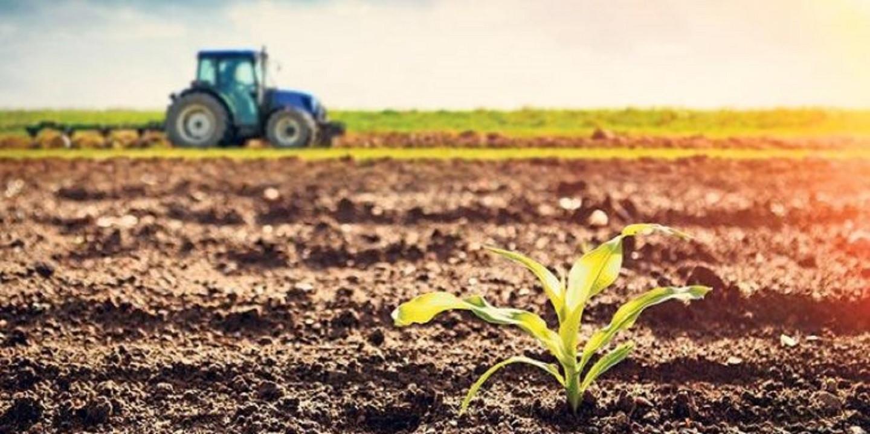 TÜİK, haziran ayına ilişkin Tarım-ÜFE verilerini açıkladı