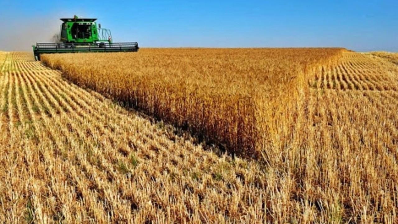 Tarımsal girdi fiyat endeksi artış kaydetti