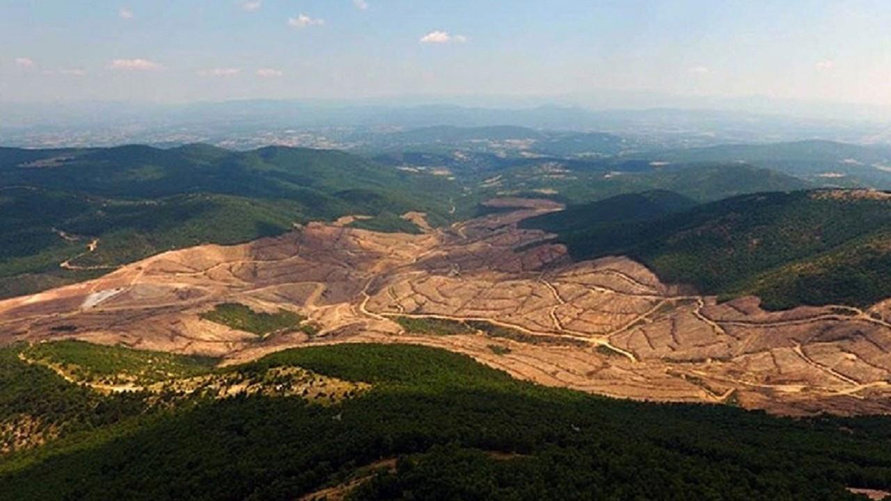 Alamos Gold, anlaşma ihlali iddiasıyla Türkiye'yi dava ediyor