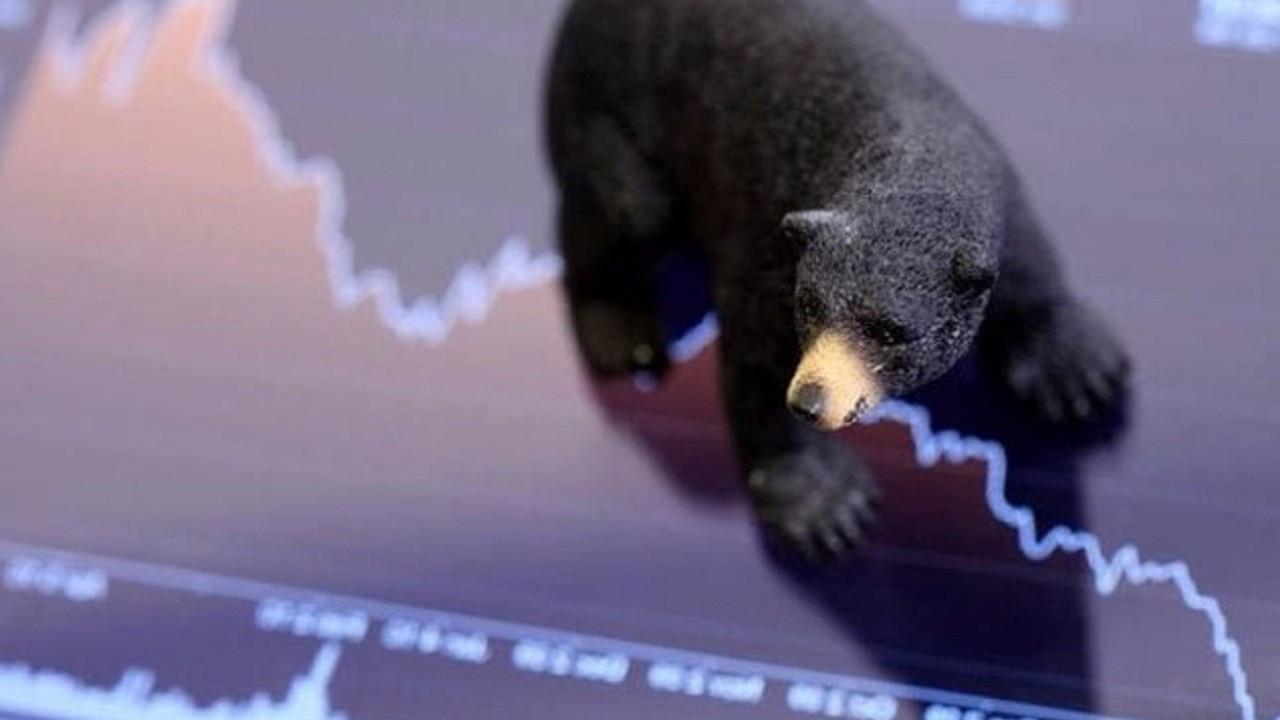 Ayı piyasası nedir? Boğa piyasasıyla farkları nelerdir?