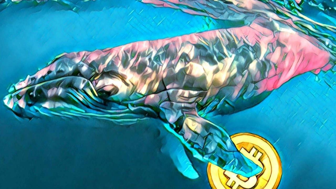 BTC balinaları iş başında!