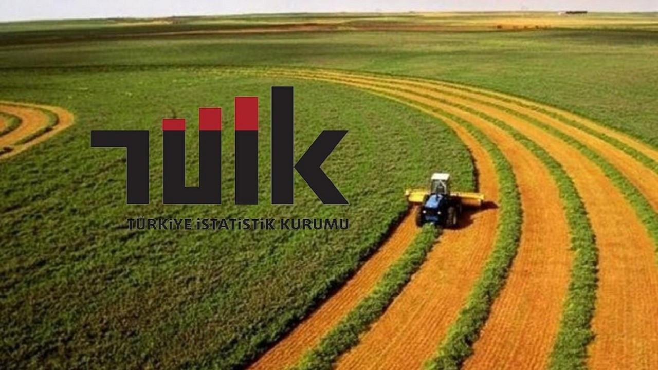 TÜİK: Tarım-GFE yıllık yüzde 28,74, aylık yüzde 0,93 arttı